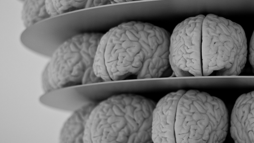 Brains by Neil Conway via Flickr